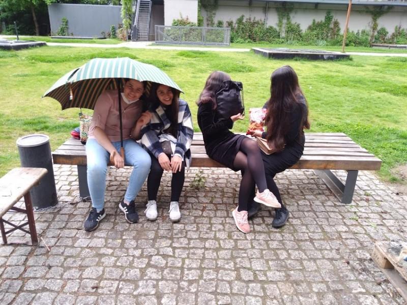 Animalesque-Regen